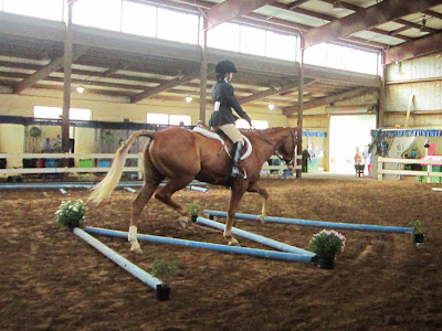 4r ranch state 4 h horse show part 2 for Negative show pool horse racing