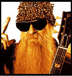 Billy Gibbons Barba