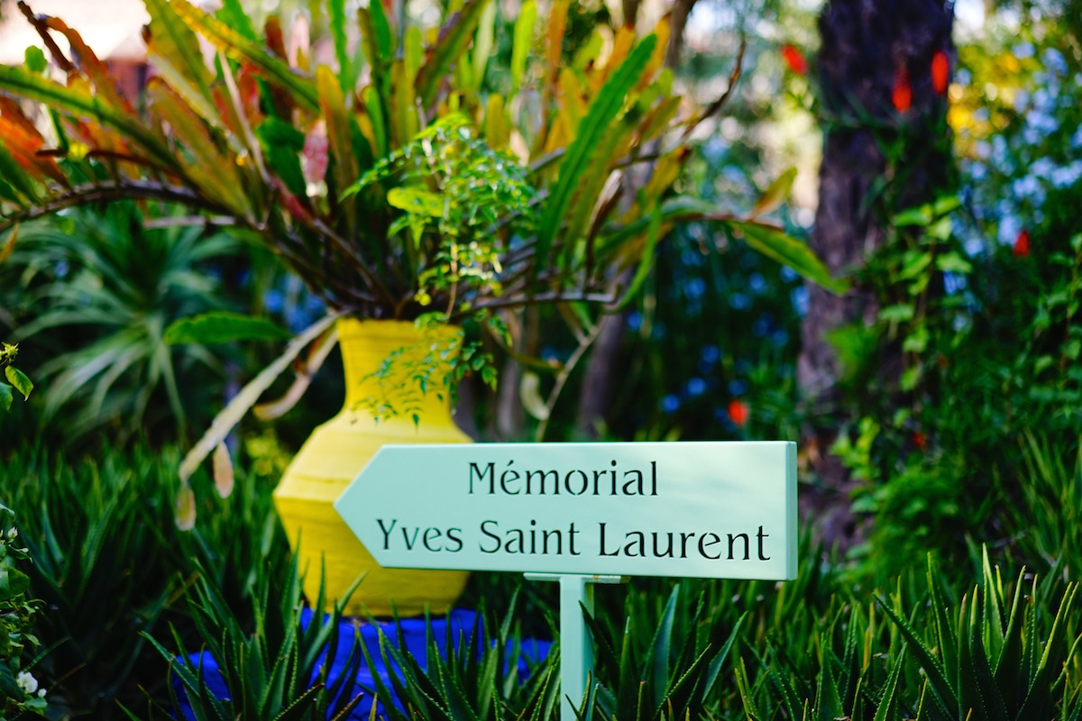 Jardin majorelle marrakech the style memo for Le jardin yves saint laurent marrakech