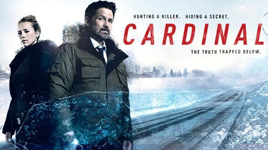 Cardinal serie