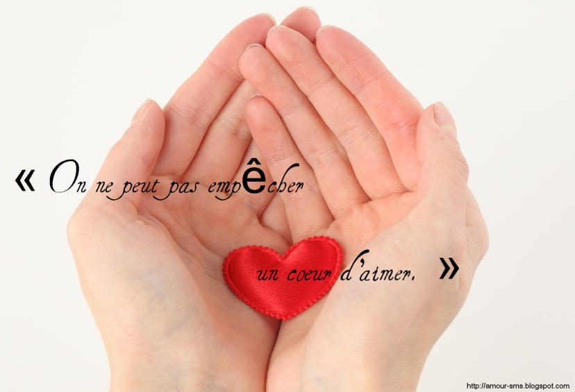 Proverbes et citations d'amour en images