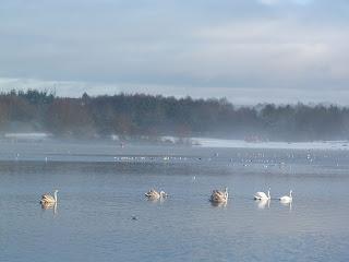 Strathclyde Loch