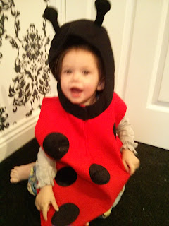 youngest ladybird
