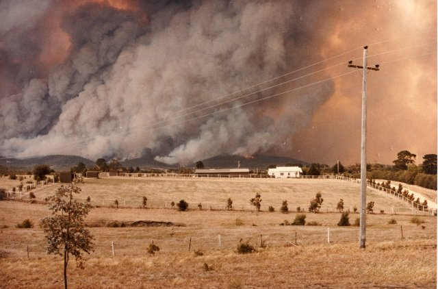 36 Amazing Historical Pictures. #9 Is Unbelievable - Ash Wednesday bushfires on the 16th of February 1983 in Australia.