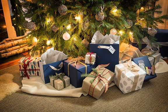 Top Holiday Gift Ideas from Best Buy #HintingSeason
