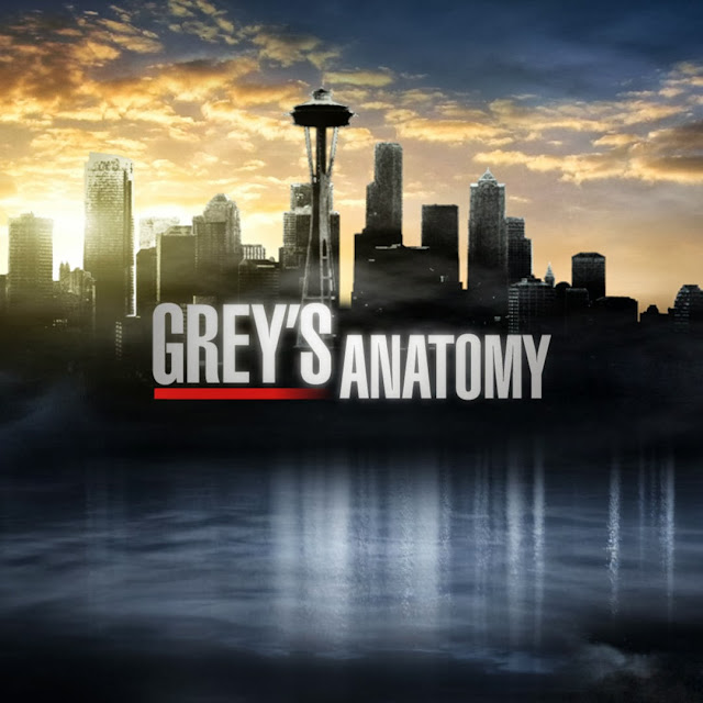 greys anatomy Grey's Anatomy 10ª Temporada Episódio 07   Thriller