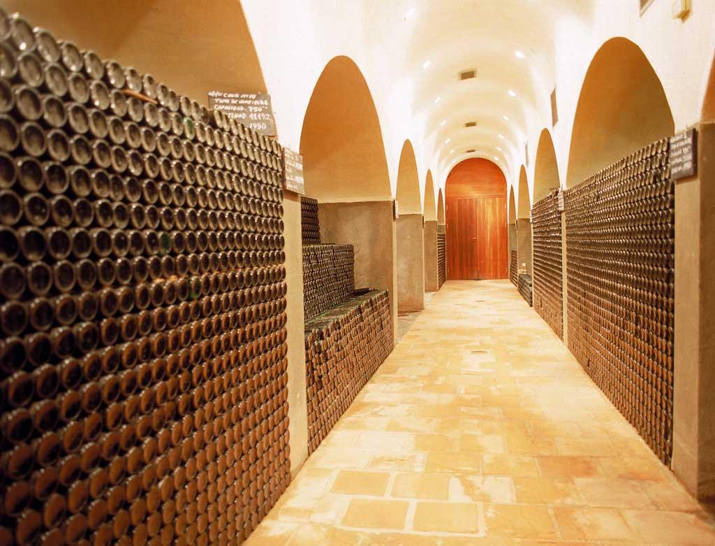 Noticias sobre vinos tranquilos