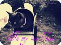 Rubrica : In my mailbox
