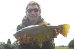Best Tench 39%