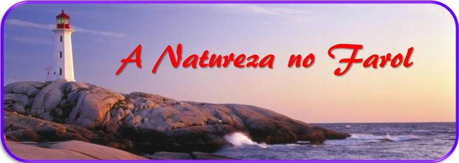 A Natureza no Farol