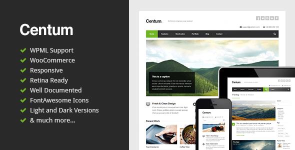 Centum v2.6 - Themeforest Responsive WordPress Theme