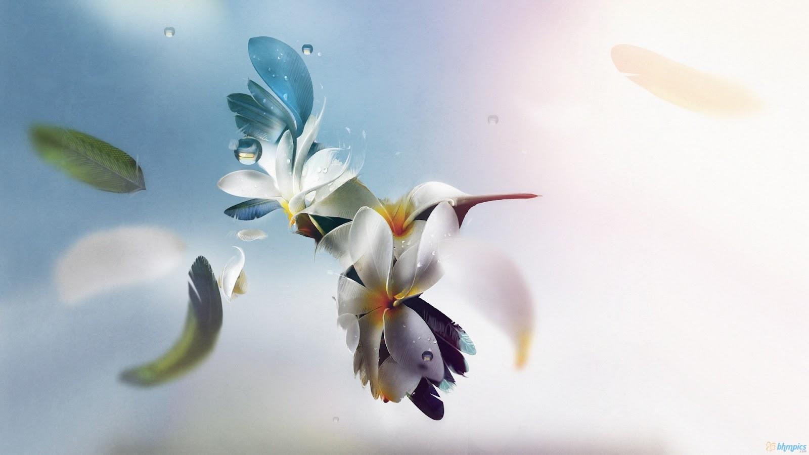 http://2.bp.blogspot.com/-xG4-71UoAy4/UG_NoEi8ygI/AAAAAAAAFcE/TxMD-SCrmgE/s1600/creative_hummingbird-1920x1080.jpg