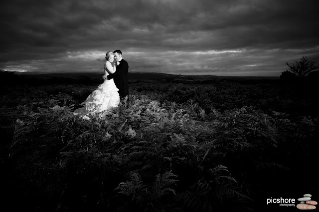 dartmoor wedding Moorland Garden Hotel devon wedding Picshore Photography