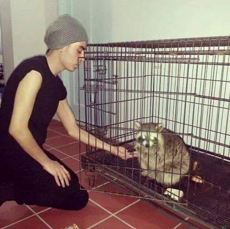 Almarhum Tunku Abdul Jalil Sangat Sayang Kepada Binatang