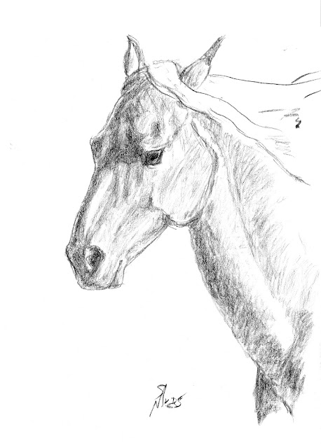 horse, art, arte, artist, animal, gallop, S. Myers, Sarah Myers, action, charcoal, sketch, study
