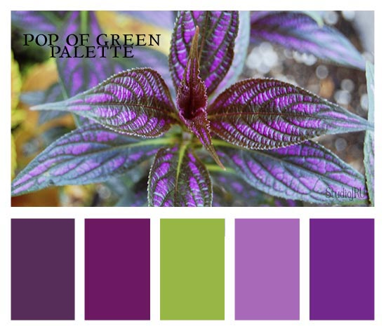 Green Wall Color Scheme And Purple Beds In Small Teenage: Madre's Musings: July 2012