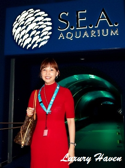 resort world sentosa sea aquarium luxury-haven