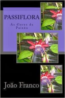 Passiflora-As flores da Paixão.