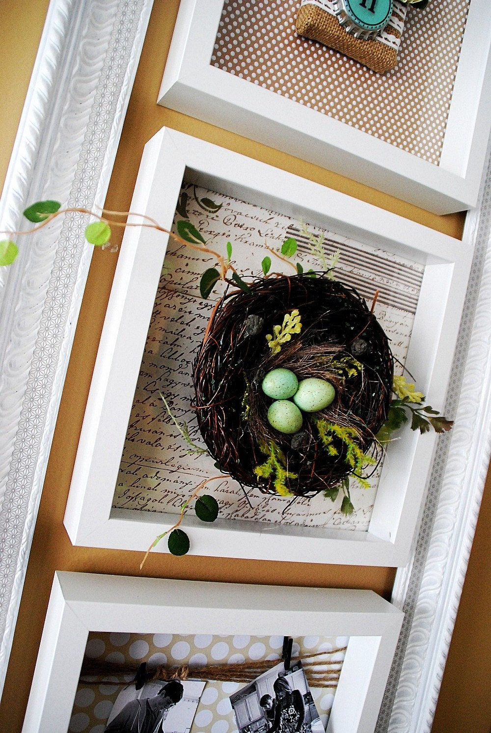 Decorating A Wall For All Seasons Spring Specimen Wall Art