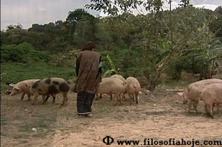 Filho pródigo entre os porcos