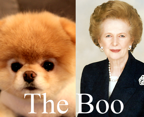 Margaret Thatcher RIP Boo the Dog