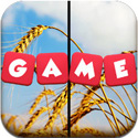 The Pic Game HD App - Word Game Puzzle Apps - FreeApps.ws