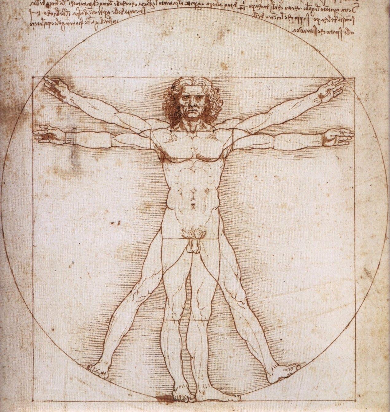 Magnífico Fundamentos De La Anatomía Humana Y Fisiología Notas ...