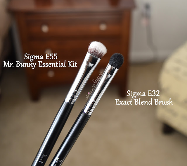 Sigma E32 Exact Blend Brush Review
