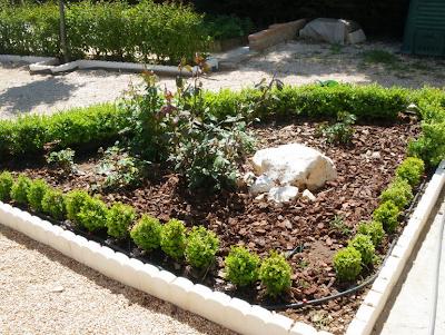 Venta de arreglos para jardines madera de pinares arreglos para el jard n corteza de pino - Pinos para jardin ...