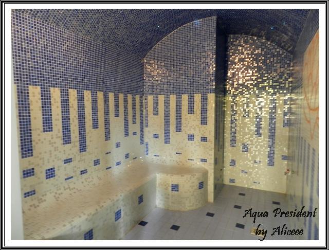 felix-aqua-president-sauna