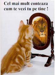 Nu lăsa pe nimeni să te facă să renunți! ☺