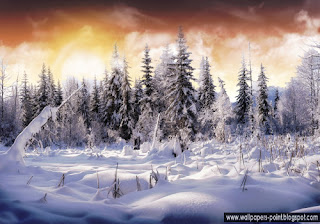 Winter Wonderland Wallpapers desktop