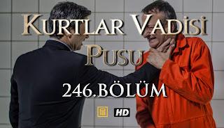 Kurtlar Vadisi Pusu 246.Bölüm İzle | HD | Tek Parça