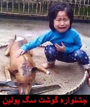 جشنواره گوشت سگ یولین