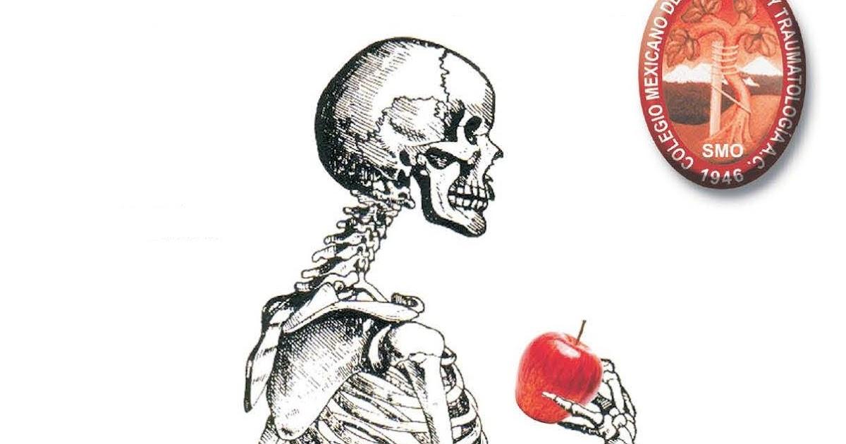 Colegio mexicano de ortopedia y traumatolog a capitulo de for W de porter ortopedia