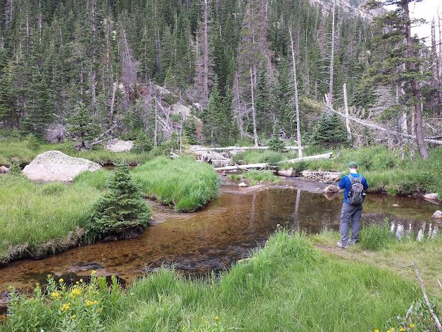 Mills Lake Trail