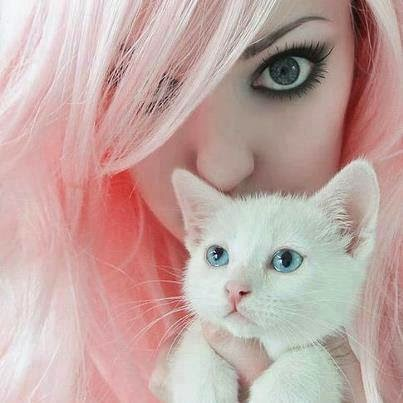 girl hide face with white cat dp
