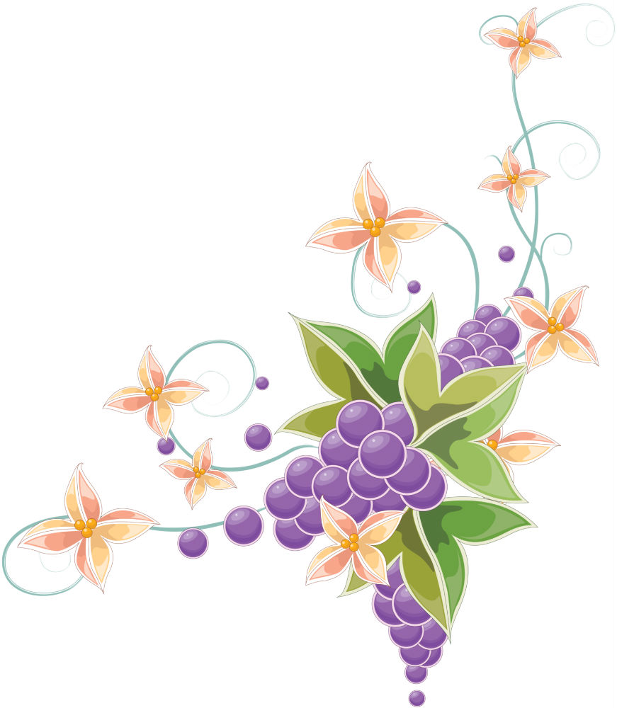 Цветы узоры цветы фото