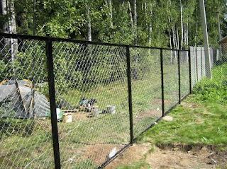 Забор из сетки-рабицы. Фото 2