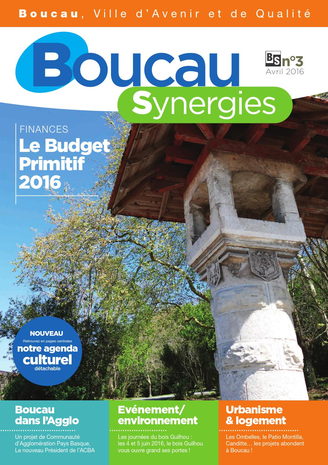Boucau Synergies n°3 - Avril 2016 - Page 10