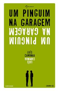 UM PINGUIM NA GARAGEM - ebook