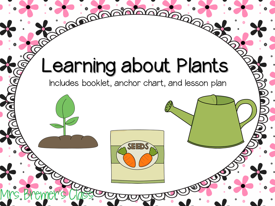 Plant Booklet, Anchor Chart, and Lesson