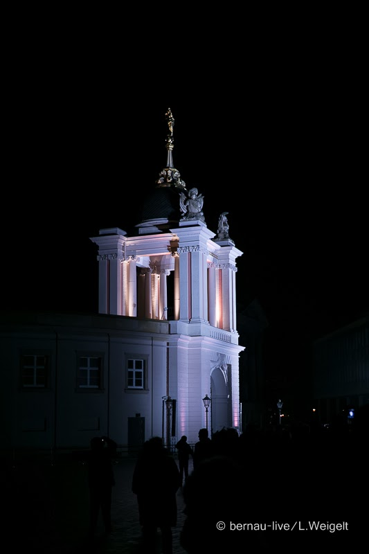 20140118 Parlament brandenburg 5560