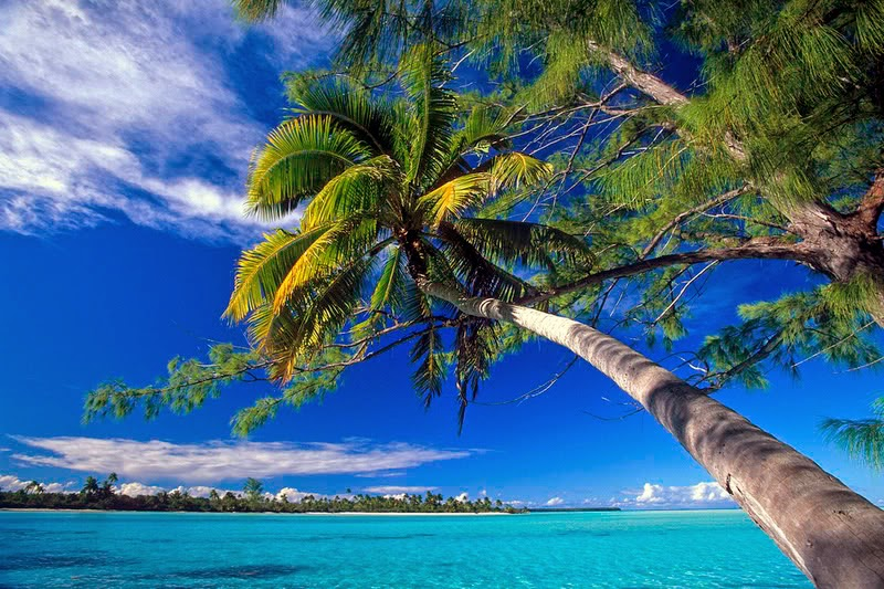 TETIAROA Polinesisa Francesa