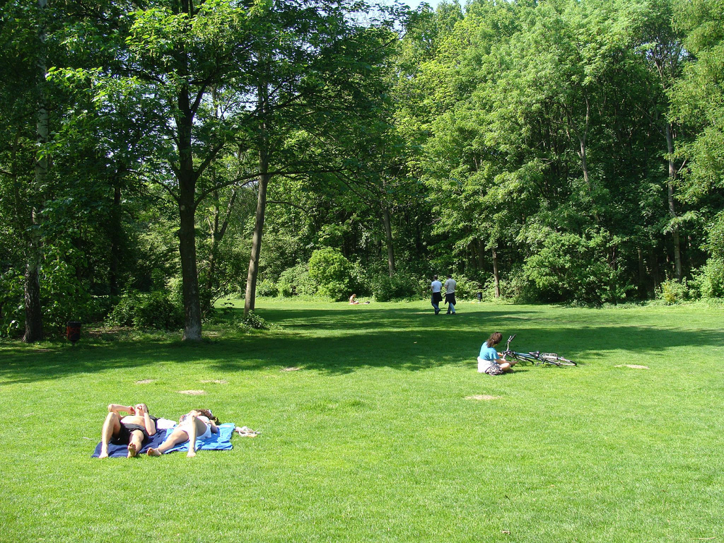 Sunbathing at Tiergarten (Berlin, Germany)