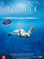 Loài Rùa: Cuộc Hành Trình Khó Tin