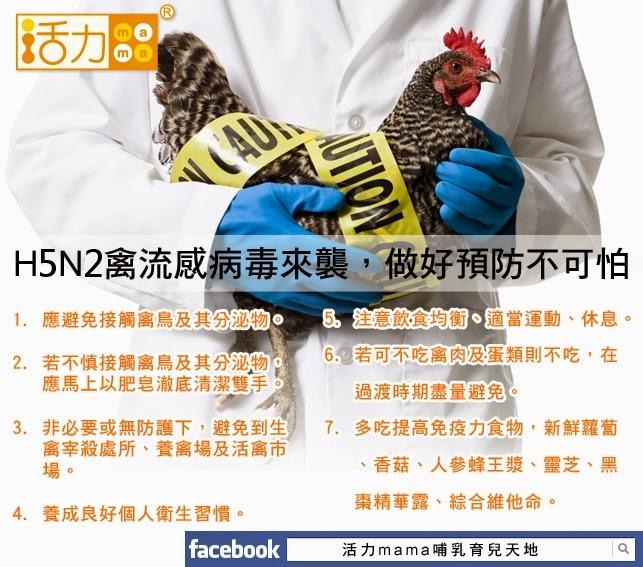 屏東大武山再度爆發H5N2禽流感疫情