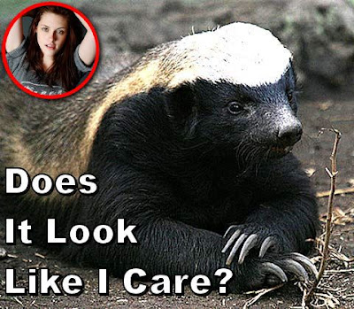Image of a honey badger looking uninterested with a caption saying does it look like i care