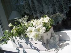2011r.-jest na biało...