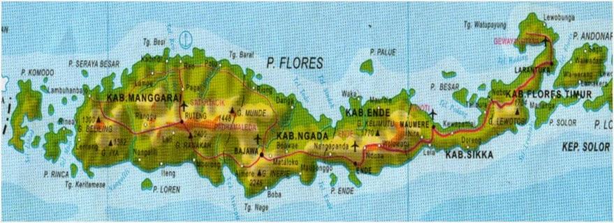 ... timur Flores yang kemudian ...
